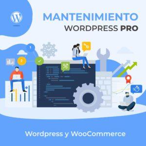 Mantenimiento Wordpress Pro